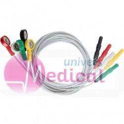 Câble Holter 5 fils