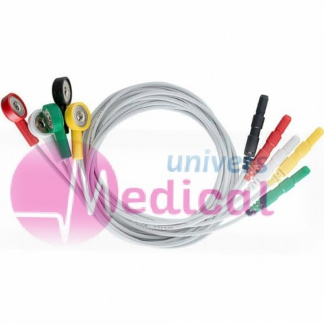 Cable HOLTER ,5FILS