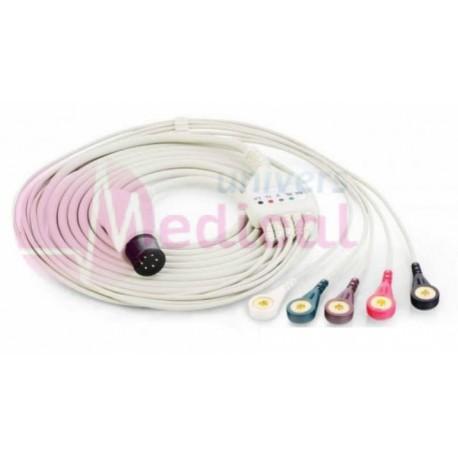 Câble ECG 5 fils pinces 6 pins