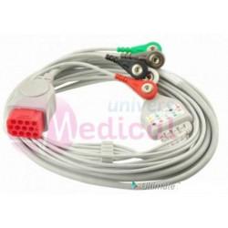 Câble ECG 5 fils Dash
